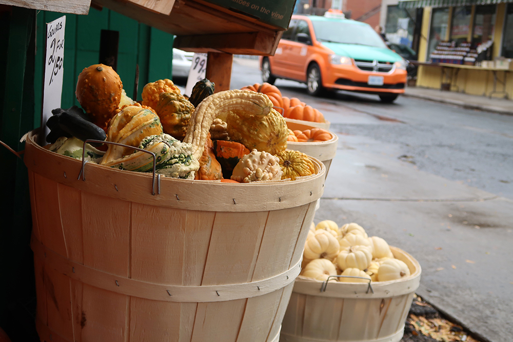 Bushels of gourds on display on a Toronto street with a Toronto taxi in the background