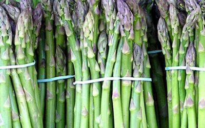 Asparagus 101: Choosing & storing