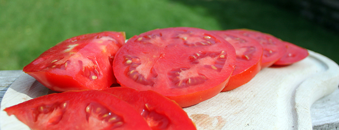 Grow your own beefsteak tomatoes – Part 1: Varieties & materials